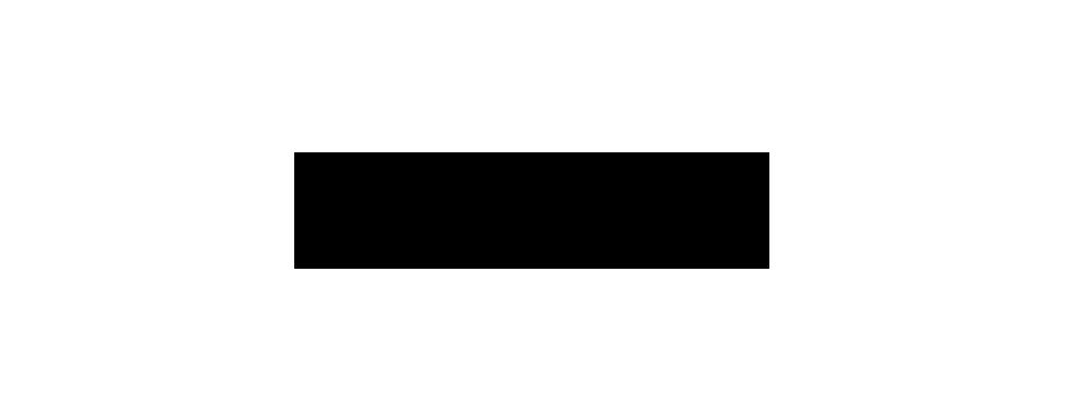 pulz logo