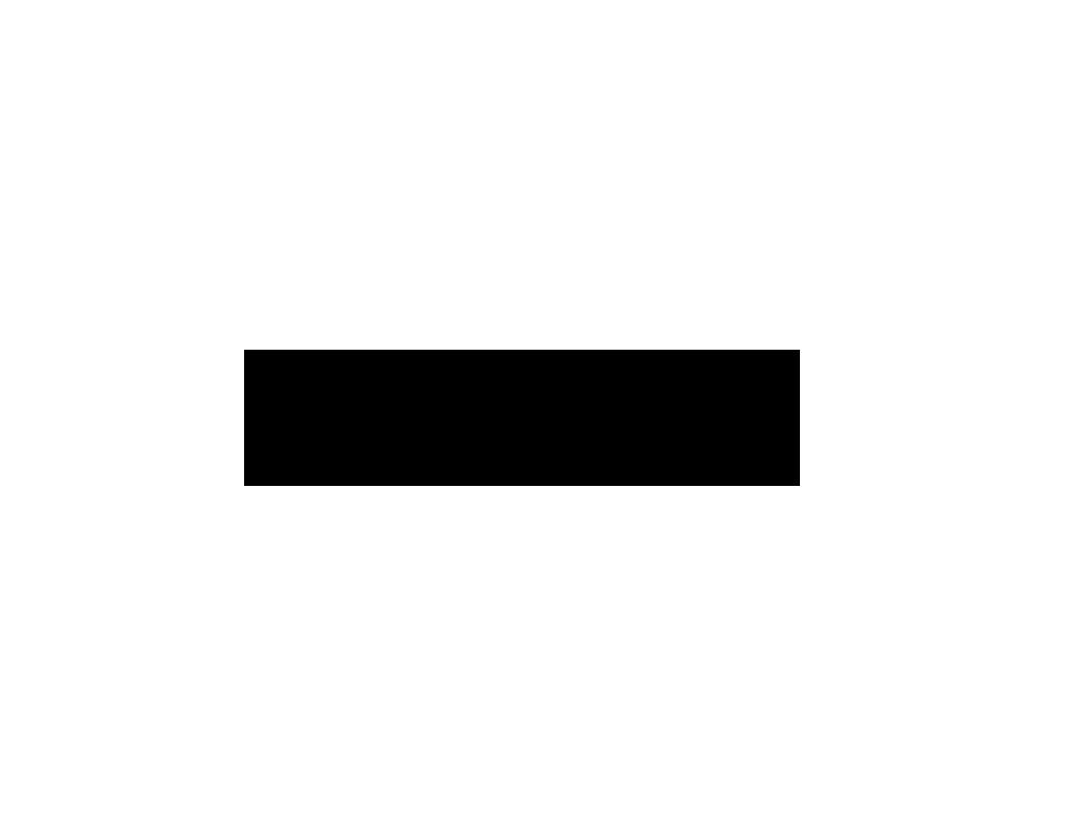 pulz case logo